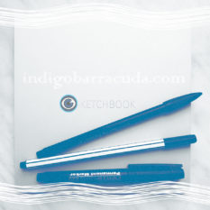 indigobarracuda.com
